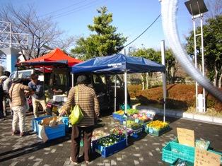 名古屋ウィメンズマラソン 2015