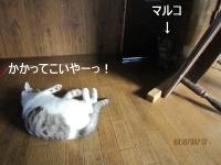 blog150614_1.jpg