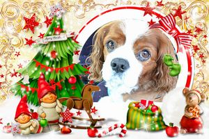 14172531791111248806クリスマス