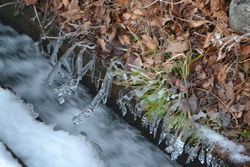 005水滴凍る