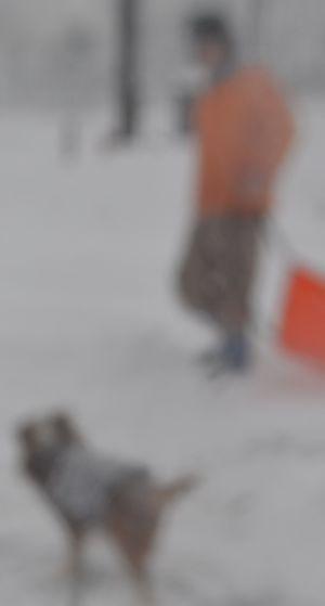 010雪片付け