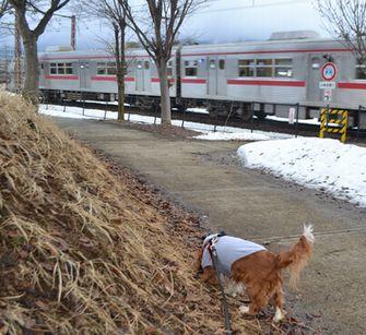 005電車