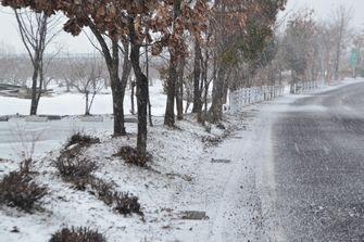 001ちらちら雪