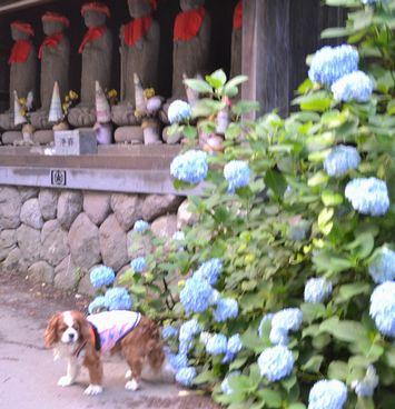 024谷巌寺
