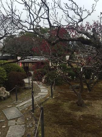 2015Mar17Kyoto2.jpg