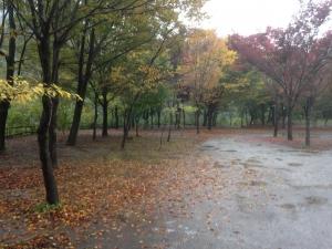 長瀞キャンプ村 サイト