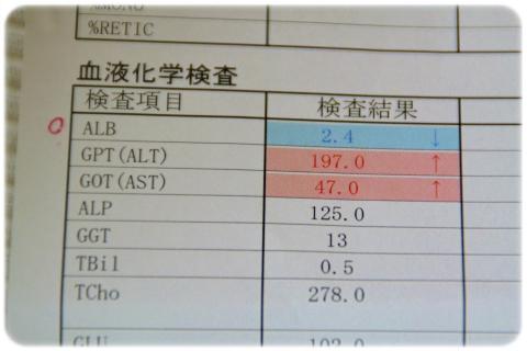 H27 6 再受診 (1)