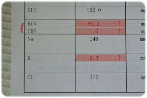 H27 6 再受診 (2)