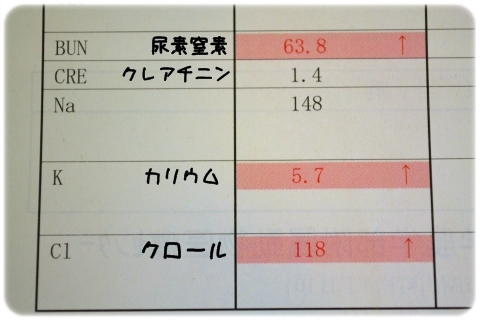 H27 7 検診結果 (2)