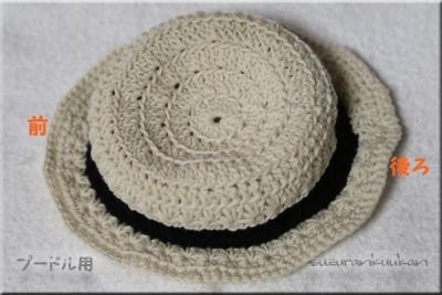 平カンカン帽183 プードル用
