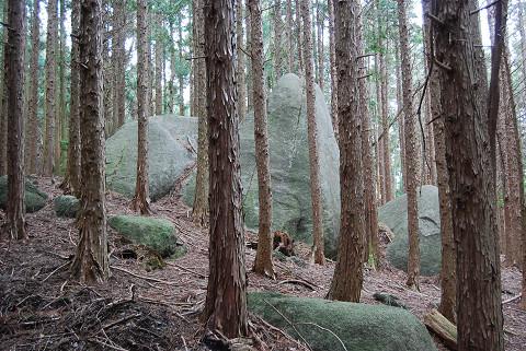森の中に巨石
