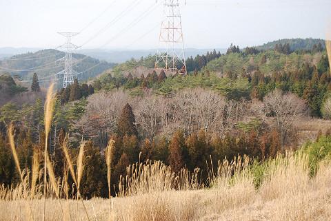 巴山コースの風景