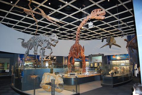 ティラノサウルスとブラキオサウルス
