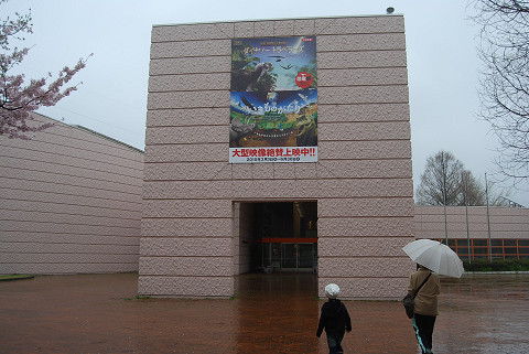 自然史博物館