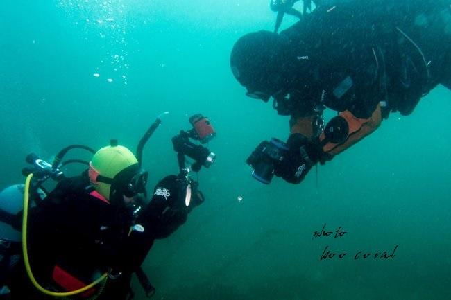 boo coral1