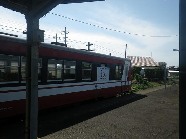 IMGP0633.jpg