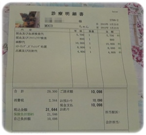 IMG_6481-1.jpg