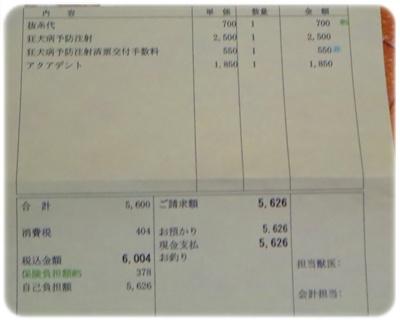 IMG_6901-1.jpg