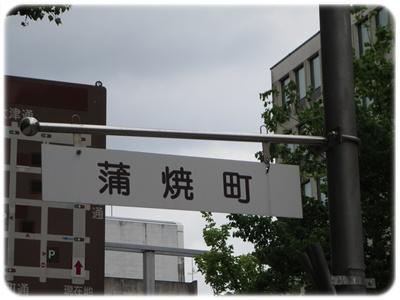 IMG_7039-1.jpg