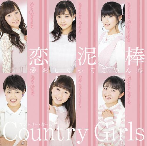 「愛おしくってごめんね/恋泥棒」DVD付き初回限定盤B