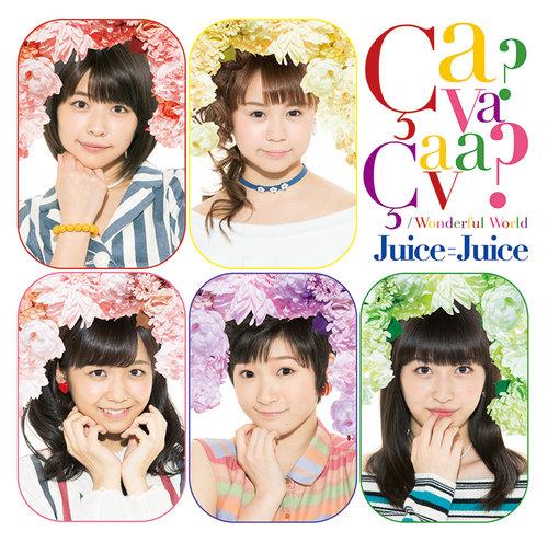 「Wonderful World/Ca va ? Ca va ?(サヴァ サヴァ)」DVD付き初回限定盤D