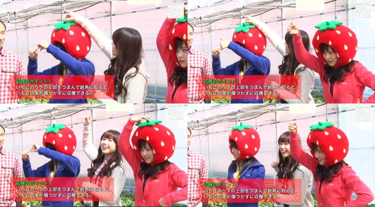 いちごの収穫方法