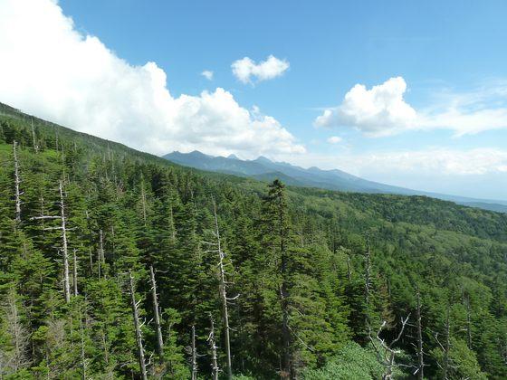 北八ヶ岳ロープウェーから眺める八ヶ岳