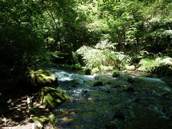 清らかな蓼科大滝の水の流れ