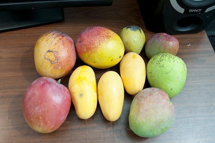 Mango-061315.jpg