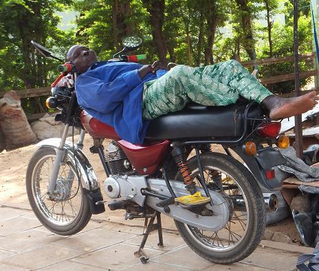 バイクの上でお昼ね