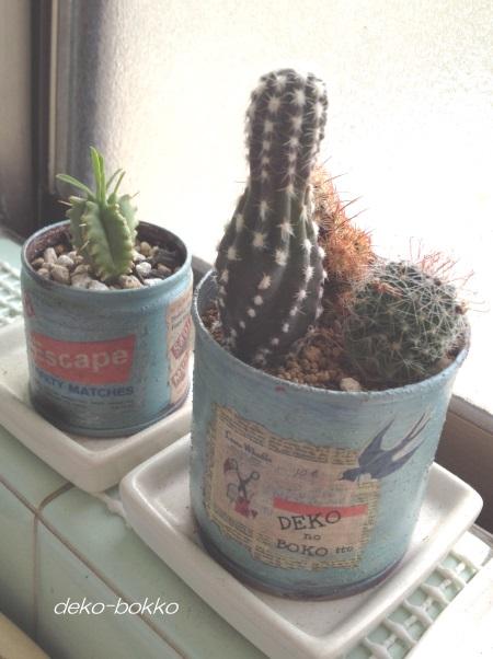 サボ植え MARRYリメ缶 201506-2