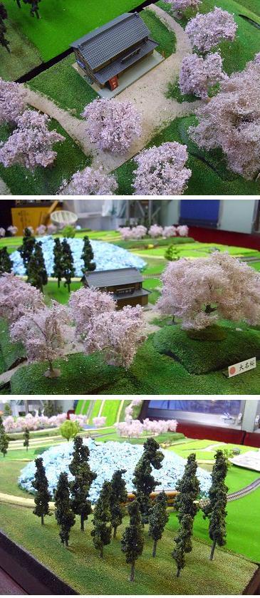桜そば屋a