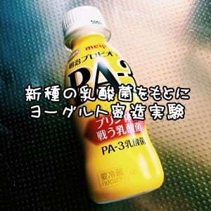 IMG_9244.jpg