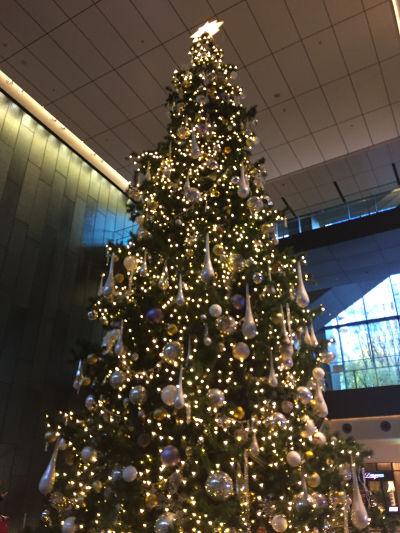 Xmas_tree201412.jpg