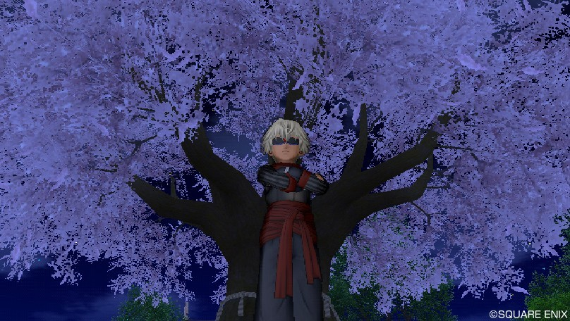 桜の下の忍者