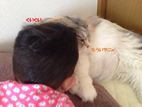 突撃する娘と嫌がる猫