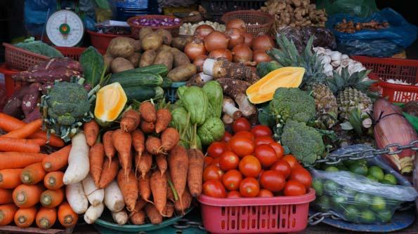 20141118 fresh vegetable 21cm DSC00421