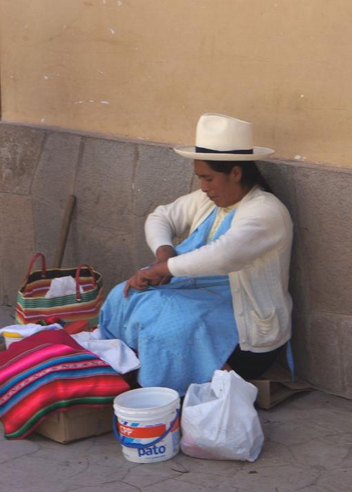 20150605 Cusco 18cm DSC07798