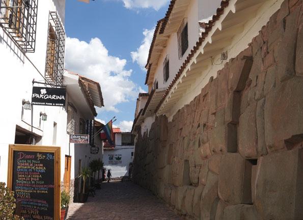 20150605 Cusco 21㎝DSC07193