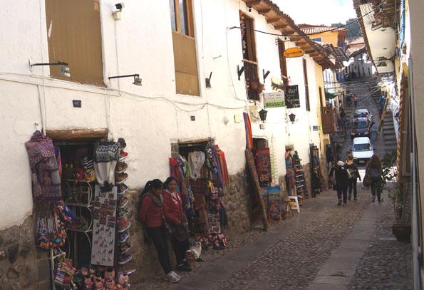 20150605 Cusco 21㎝DSC07197
