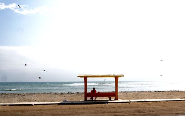20150604 beach 21cm DSC06904