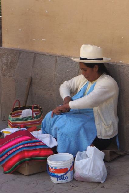 20150609 urbamba 15cm DSC07798