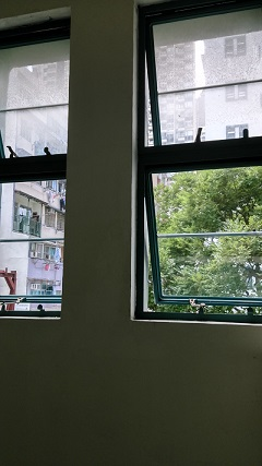 PMQ古い窓枠(小1)