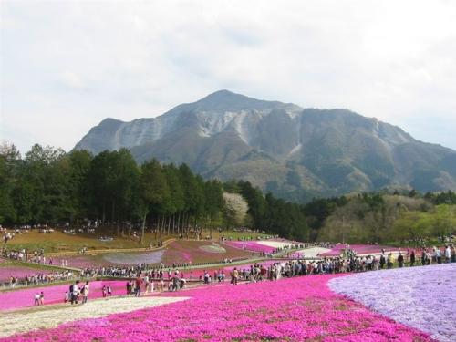 chichibu2007-002.jpg