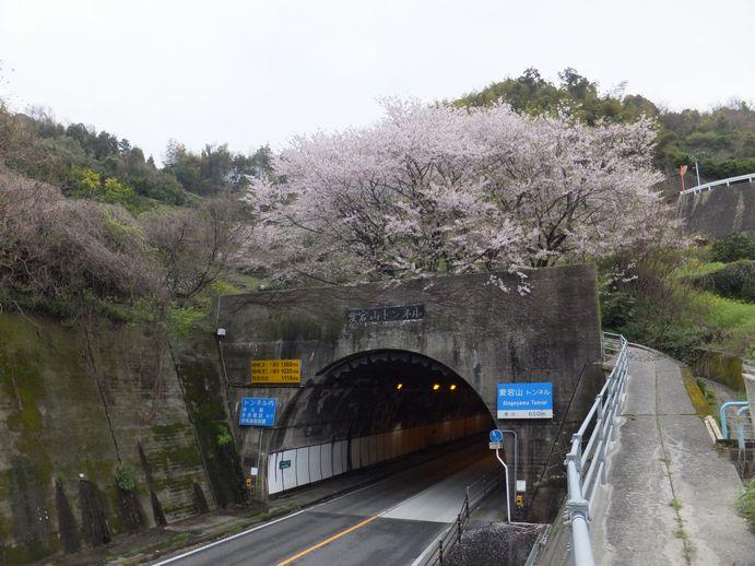 150405-09_愛宕山トンネル