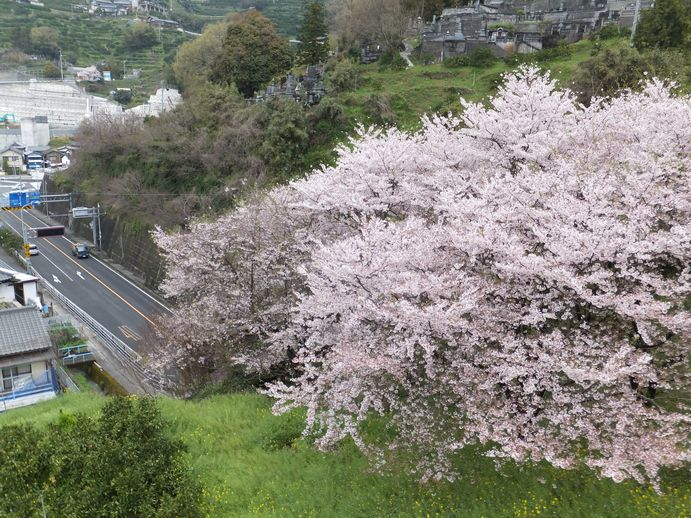 150405-10_愛宕山トンネル
