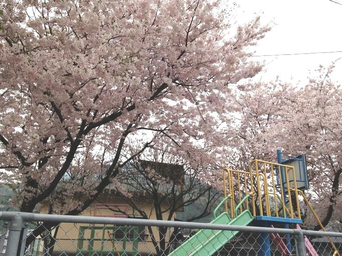 150405-11_公園