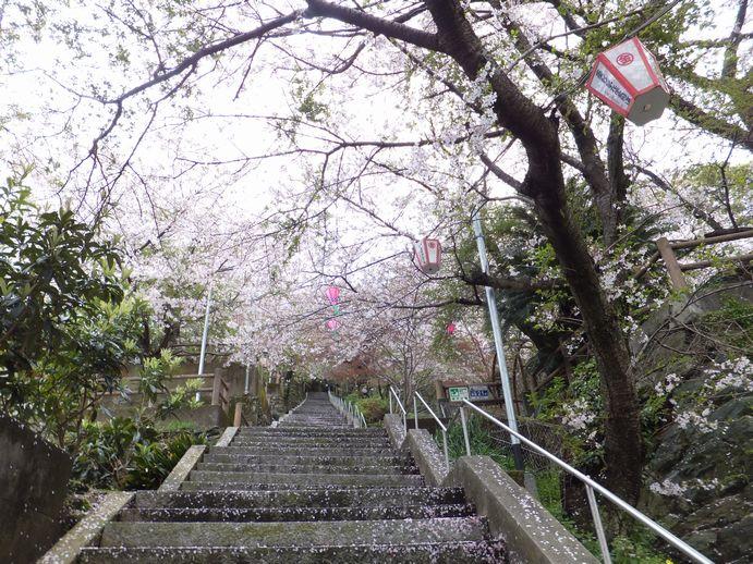 150405-19_琴平公園