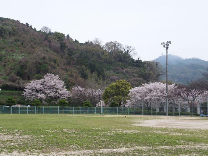 150405-31_神越公園