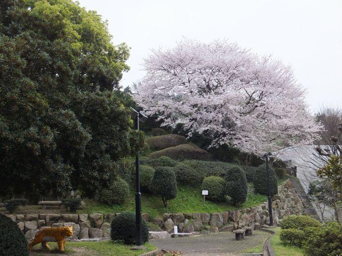 150405-34_神越公園